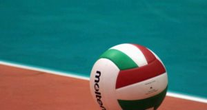 pallone-volley