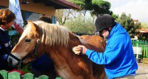 Presentazione Progetto Sport e Cavallo come veicoli Sociali