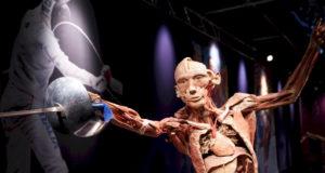 Il tour in anteprima della mostra sarà presentato da Alessandro Cecchi Paone